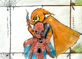 Spider-man Vs Hobgoblin by nikoskap