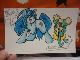 NYCC Collab by CritterKat