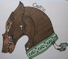 Celtic by Hero-Of-The-Stars