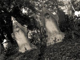 Gravestones. by ScreamJohnson