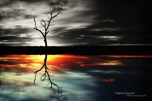 Colour My Reflection by simonebyrne