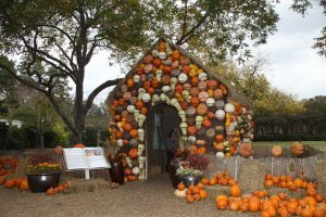 Pumpkin house III by idnurse41