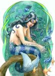 Ciclid Mermaid by Wenchworks