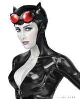 Selina Kyle aka Catwoman by deemonHunter360
