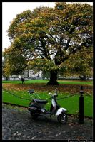 Ireland 13 by timlori