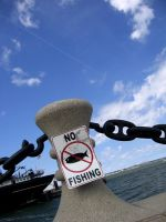 No Fishing by chameleon09