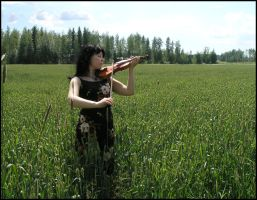 Violin On A Field IV by Eirian-stock