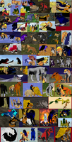 .:FH journey collage:. by orange-kitsunee