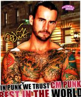 CM Punk Autograph Artwork - WWE by roXx81