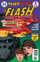 FLASH RETRO COVER WITH LETTERS by benitogallego