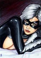 Black Cat Sketch Card 6 by veripwolf