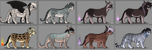 More Lion Adopts by Ronaai