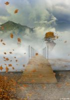 Road to the autumn by vimark