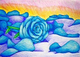Blue Rose Drawing by Reitanna-Seishin