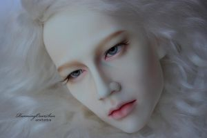 Ludwig FaceUp Details_4 by Ariel-Sun