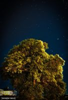 Arbre Nuit HDR surrealistic by thauzar