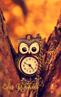 Hoot Hoot by EclipxPhotography