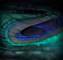 whisper by marshmallow-pies