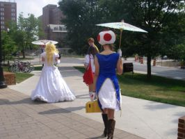 Places to Go - Peach and Toad - Spring '12 by FuzzyRedPants