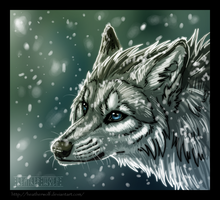 First snow by HeatherWolf