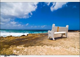Curacao Reef 1 by bubzphoto