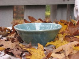 A bowl amoung leaves by Potterycat