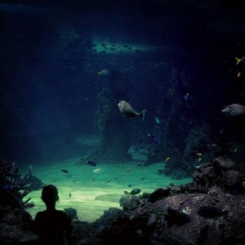 The Aquarium. by bohemianpoets