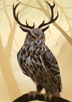 Owl with antlers by Detkef