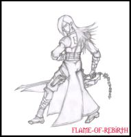 Marius Concept 01 by flame-of-rebirth