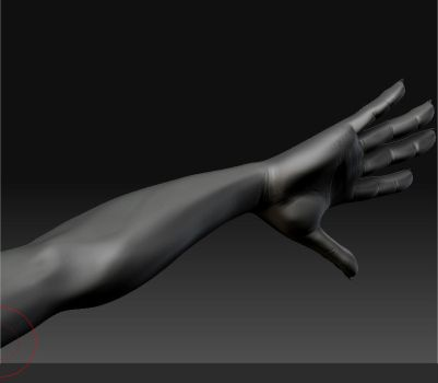 Zbrush  WIP  - Arm by Naruto-De