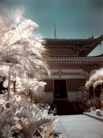 iNfraRed series - cHinatOwn 4 by shin-ex