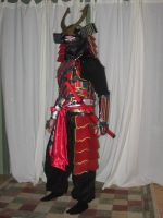 Samurai Halloween Costume I by singlet