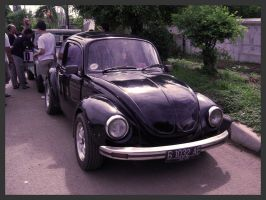 Indonesia VW Fest - Type 1 04 by atot806