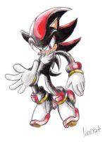 Shadow the hedgehog by NENIKAT