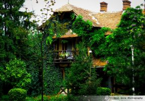 Home, sweet home by PaulVonGore