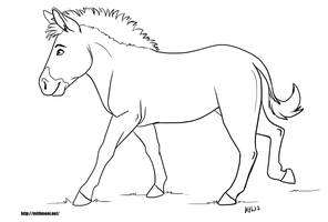 Zebra Line Art by Greykitty