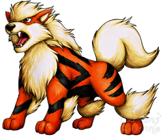 Commission - Arcanine by Lurking-Leanne