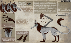 Jay reference 1.0 (anima form) by Sezaii