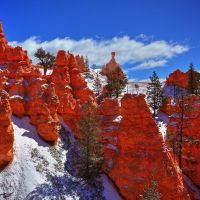 Below the Rim...Bryce Canyon by ernieleo
