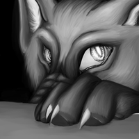 Wolf by catlover1672
