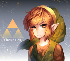 Classic Link-Hyrule Warriors by Maruuki