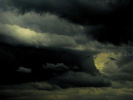 Into The Storm by DanDeibler