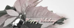Happy Holidays by AWLNorris