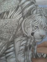 The winged tiger- detail by Canisabscedo