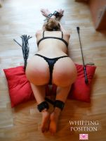 Whipping Position 2 by LadyLiliArdat