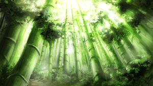 Bamboo Forest by Alexlinde