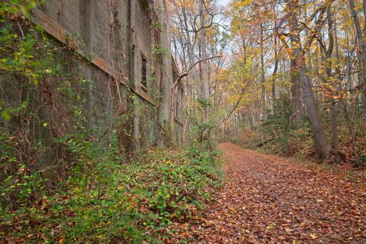 Fall Power House Trail by somadjinn