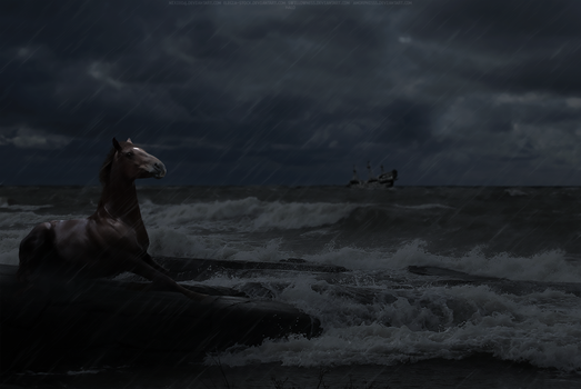 Lost At Sea by halodesigns