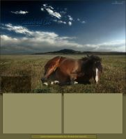 Saddlebred Layout by oceancoralgraphics