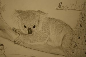 Koala 2 by smokinsteve57